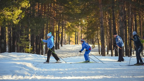 Zimske počitnice, šolski dopust