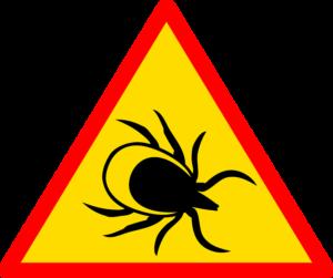 Klopni meningitis