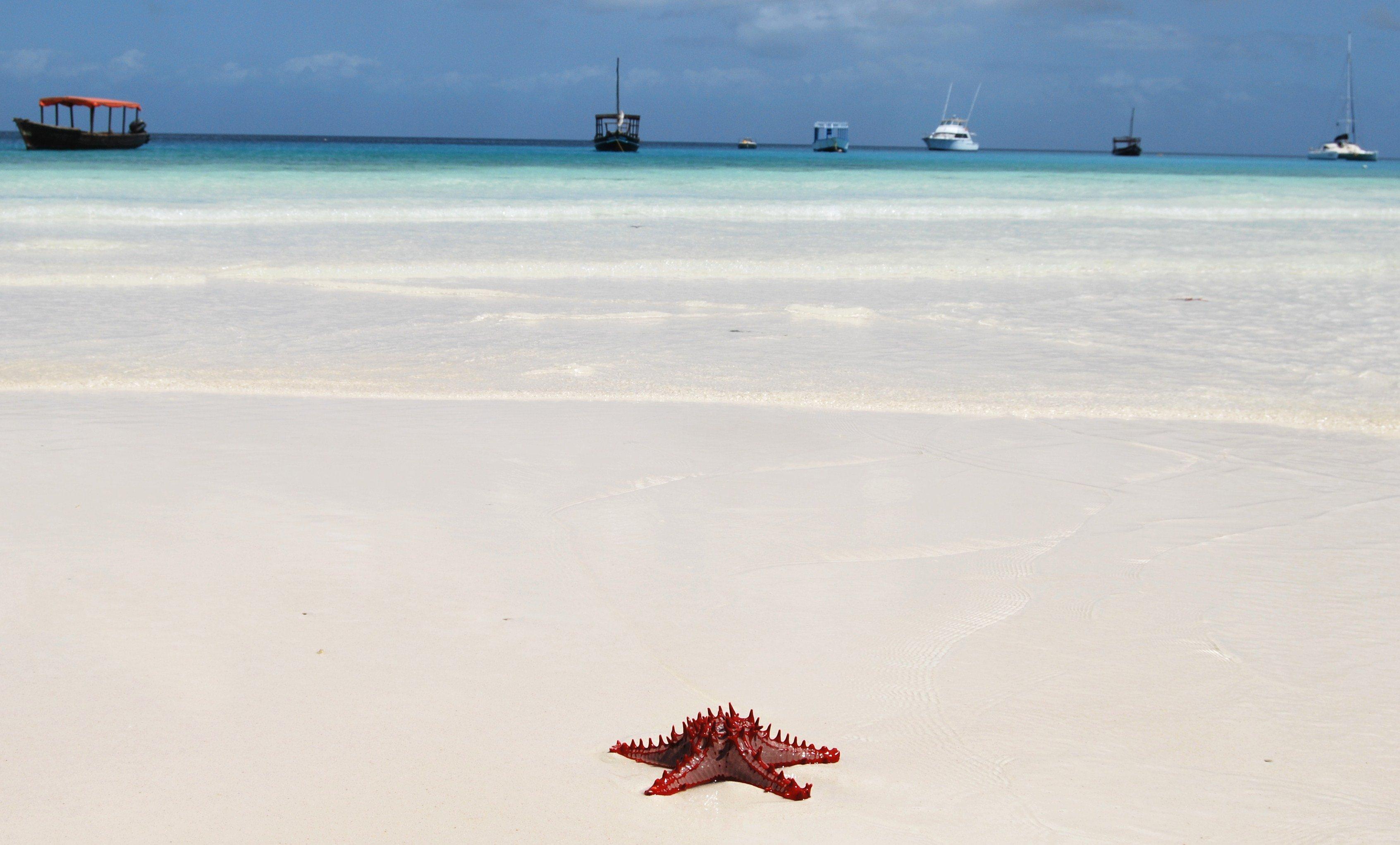 Potovanje v Zanzibar je počitniška izbira mnogih uživačev